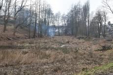 Rekonstrukce Čekalíkovského rybníka